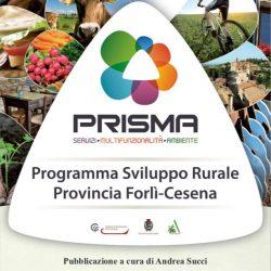 andrea-succi_prisma-programma-sviluppo-rurale-provincia-forli-cesena-30.5.2013.jpg